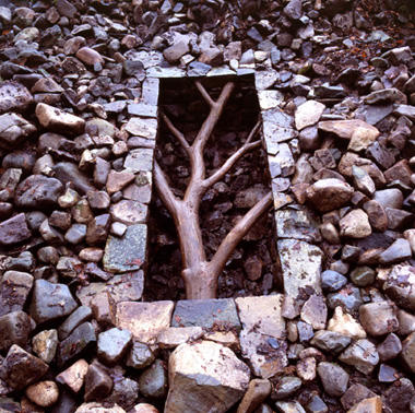 essay on andy goldsworthy